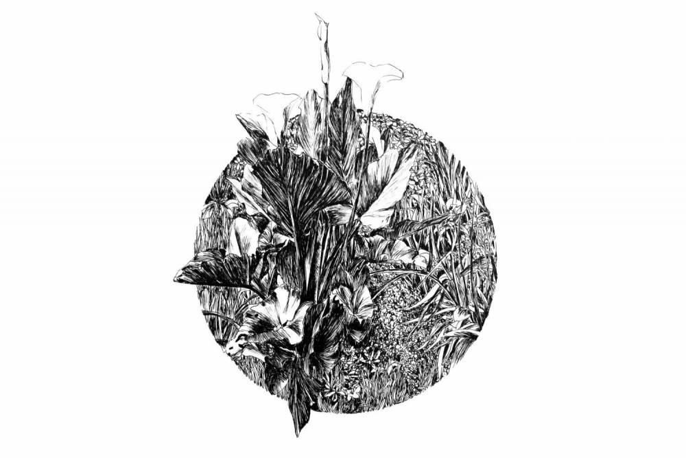 Pauline Martin - Concour Lupicia